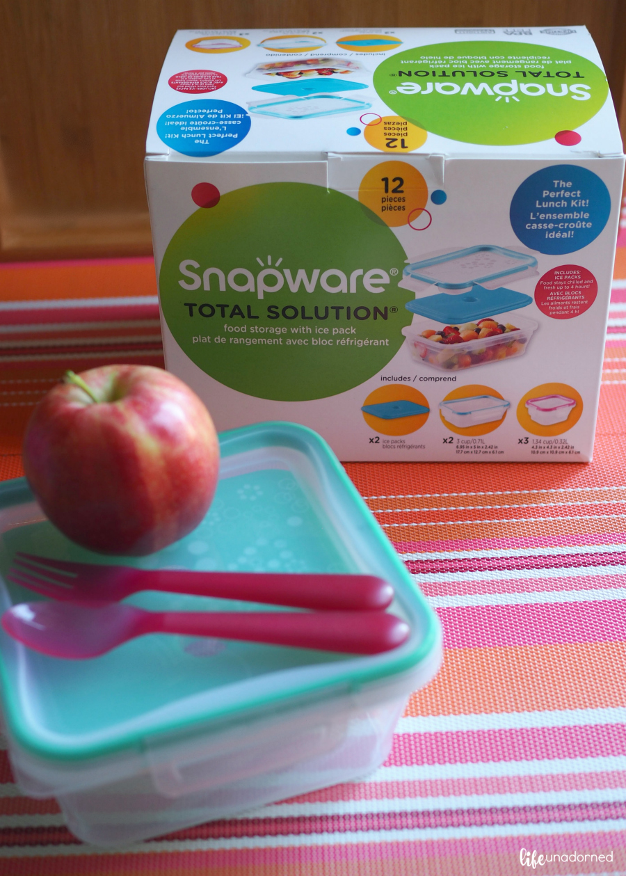 Snapware-Total-Solution-food-storage-with-ice-packs
