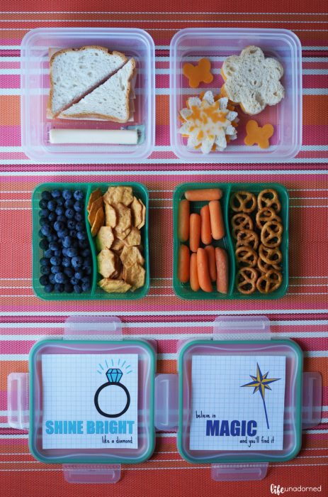 lunch-storage-and-one-week-of-free-printable-lunch-box-notes