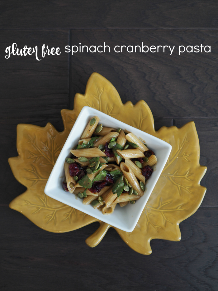 gluten-free-spinach-cranberry-pasta-salad-with-pumpkin-seeds-and-balsamic-dressing