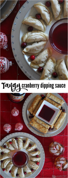 Tangy Cranberry dipping sauce